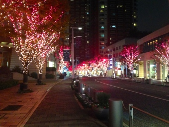 Roppongi Hills Christmas Lights