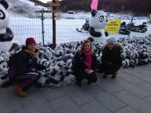Welcome to Yunfoshan (from the pandas)