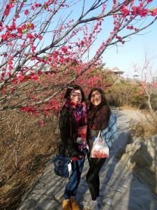 Louise and I at the top of Xiangshan with the cable-tie blossoms